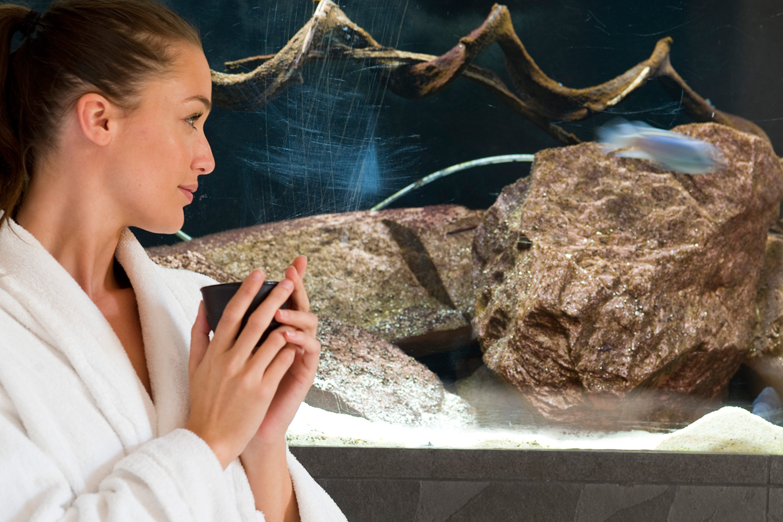 Femme buvant un thé devant un aquarium